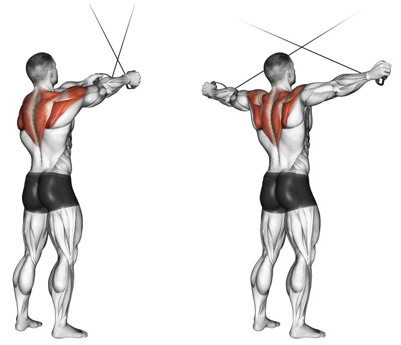 Esercizi di ginnastica correttiva a petto osteochondrosis di video
