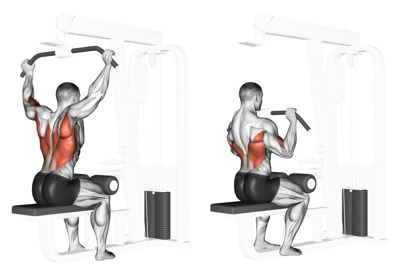 dieta massa muscolare con integratori