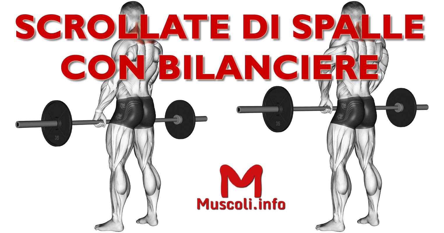 Aumentare il volume muscolare delle spalle - Gym Blog