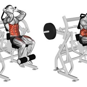 esercizi con la crunch machine - ? muscoli